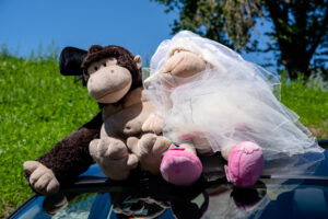 Fotohahn_Hochzeitsfotograf_Nicole&Simon-104