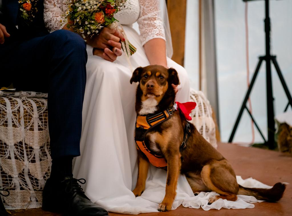 Fotohahn_Hochzeitsfotograf_Rahel & Sven-19